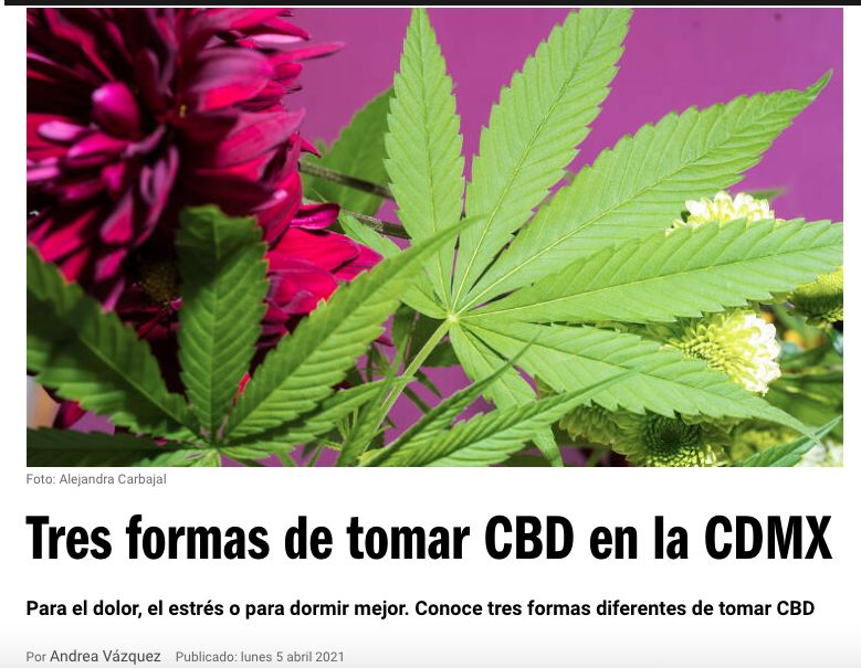 CBDbies en Time Out México